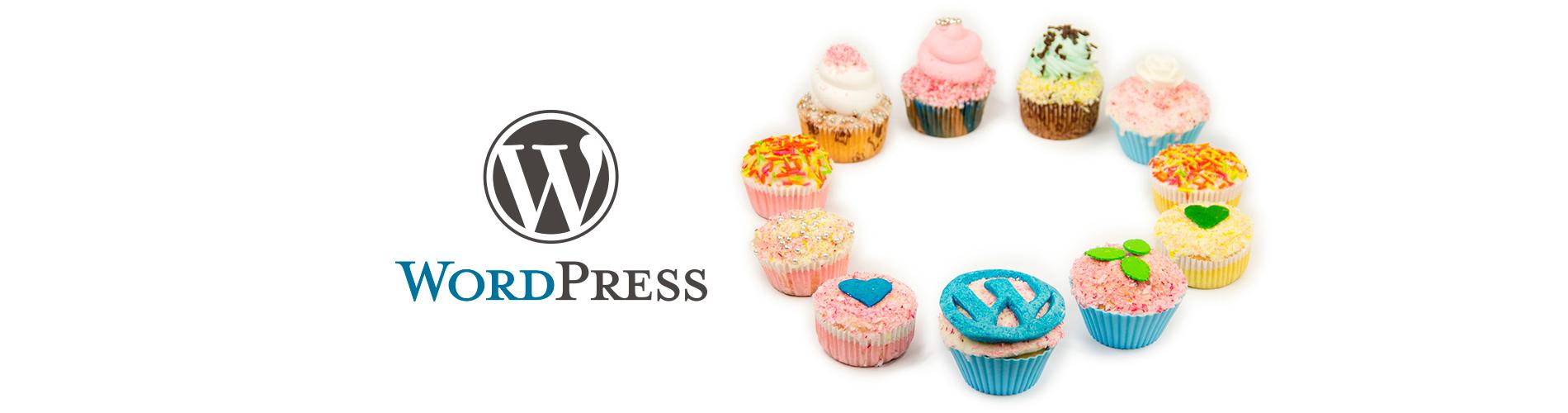 WordPressサイト制作セミナー開催中!
